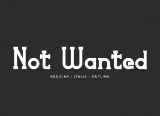 Not Wanted Slab Serif Font