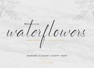 Waterflowers Script Font