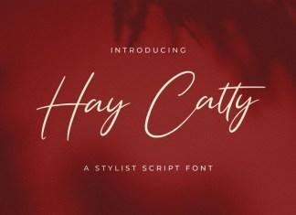 Hay Catty Script Font