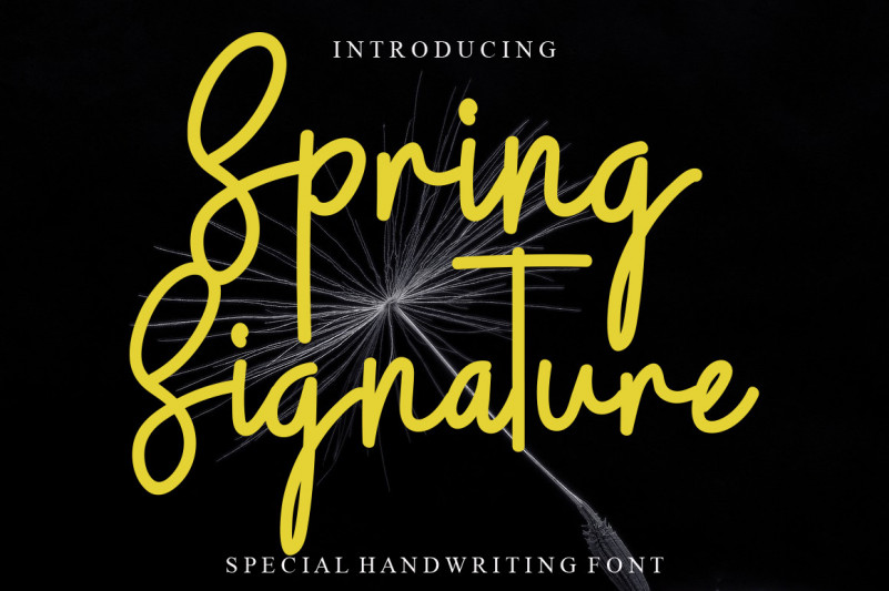 Spring Signature Script Font