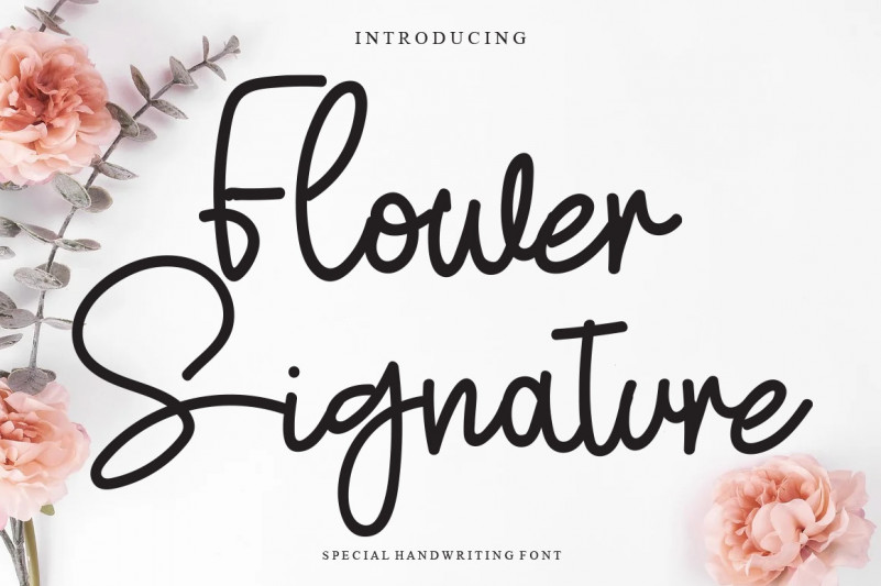 Flower Signature Script Font