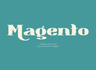 Magento Serif Font