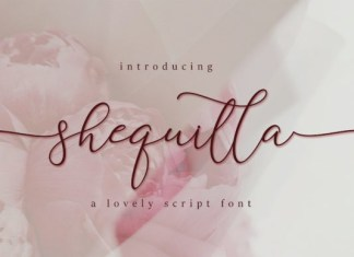 Shequilla Calligraphy Font
