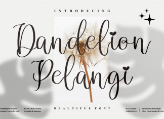 Dandelion Pelangi Script Font