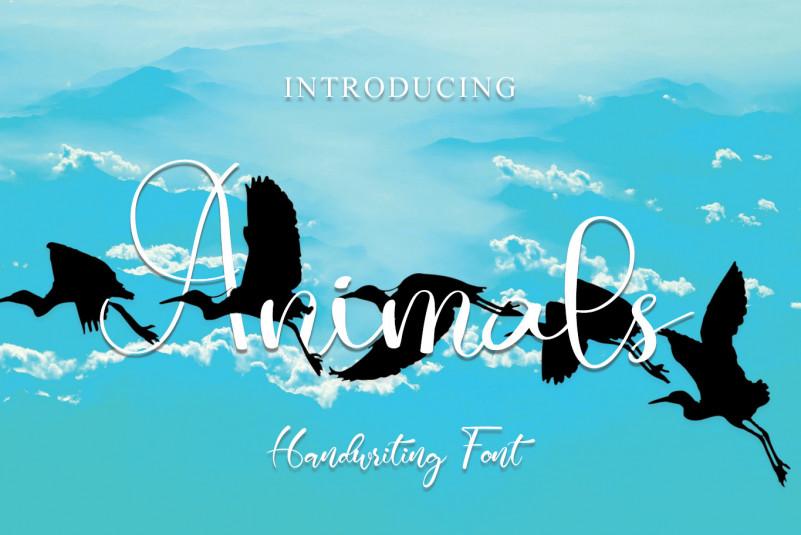 Animals Calligraphy Font