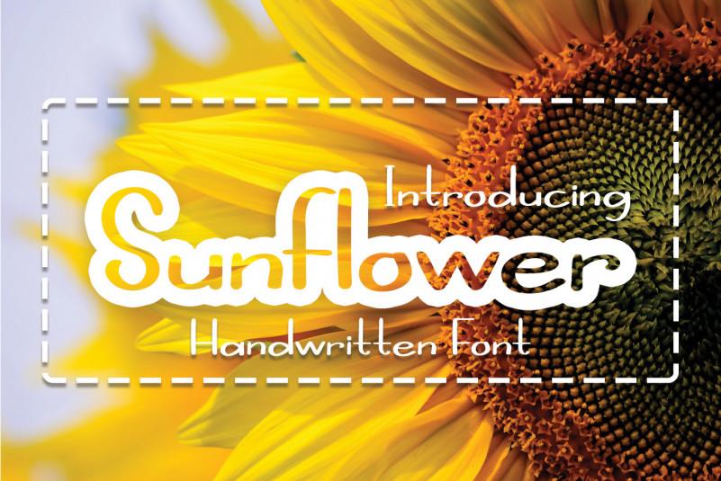 Sunflower Script Font