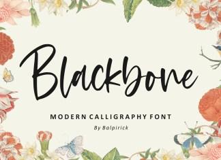 Blackbone Modern Calligraphy Font