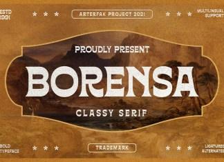Borensa Display Font