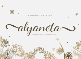 Alyaneta Calligraphy Font