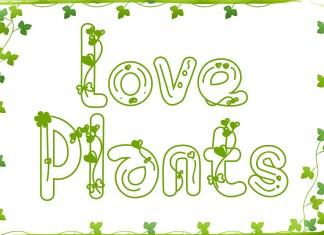 Love Plants Display Font