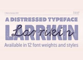 Larrikin Display Font