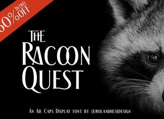 The Racoon Quest Display Font
