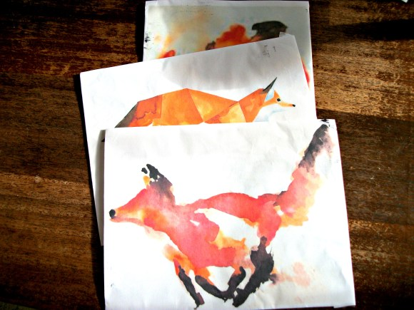 selection of foxes