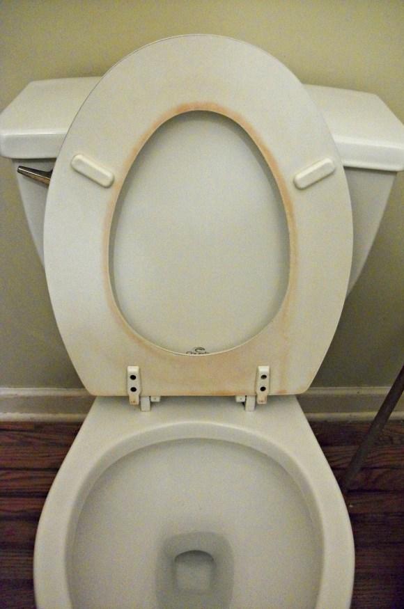 yucky toilet seat