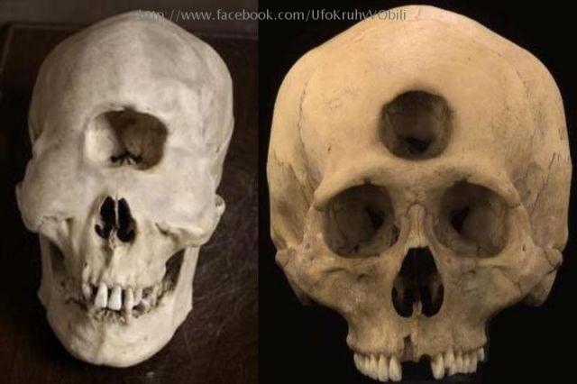 Mysterious Skull Alien Skull Alien Crystal Skulls
