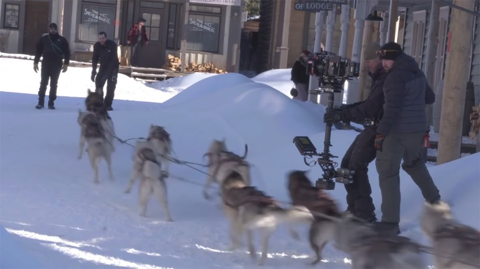 Filming the live-action dogs on set