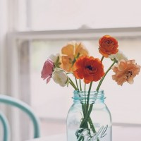 random thought thursday::  ranunculus edition