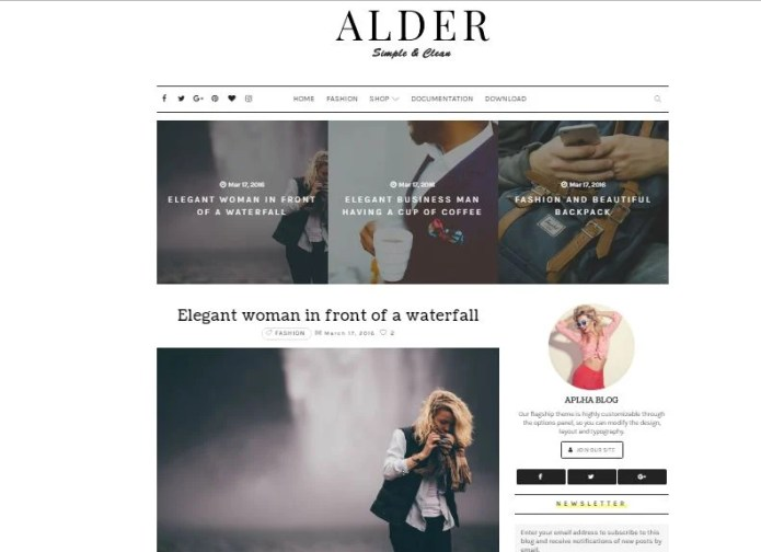 Alder Elegant Blogspot Template