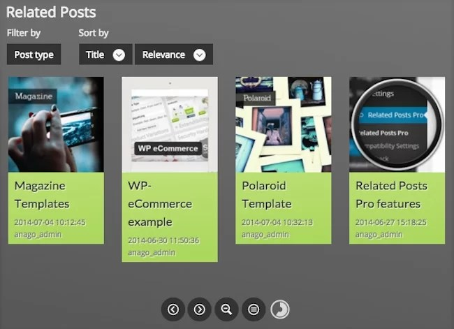 Related Posts ProPlugin for WordPress