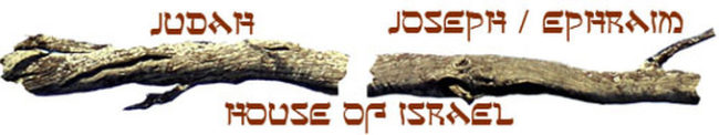 Where are the 10 lost tribes of Israel | Israel regathering in the end times prophecy