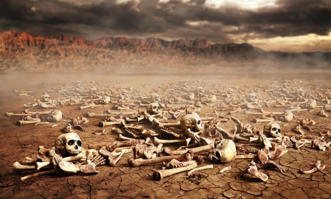 Valley of Dry Bones prophecy fulfilled at Holocaust | End times prophecy about the twelve tribes
