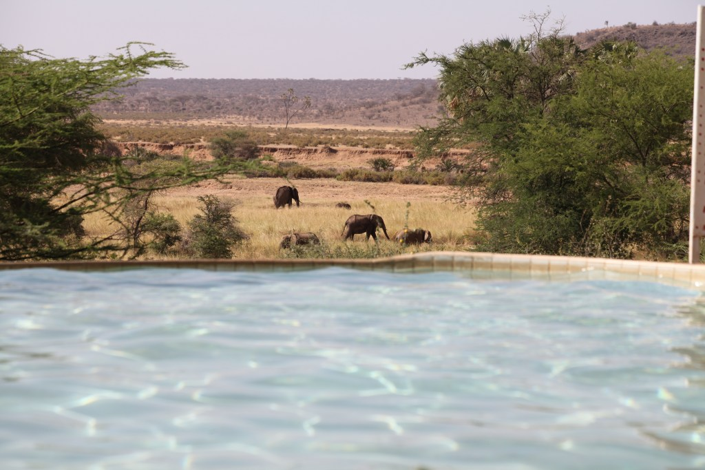 Samburu Weekend Getaway