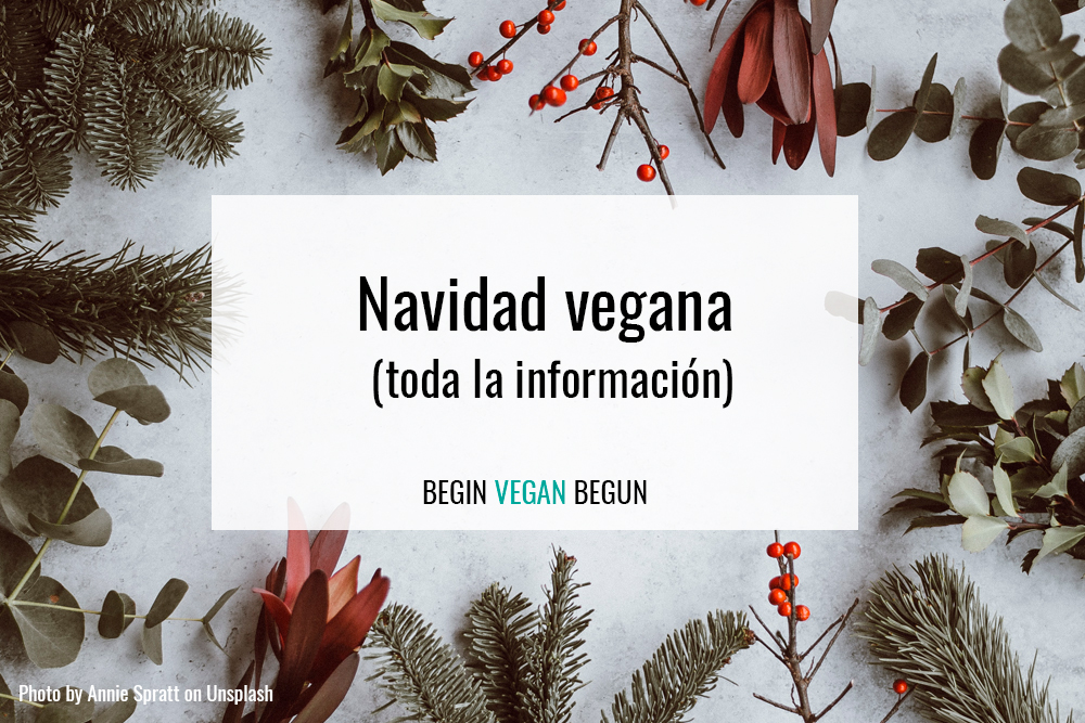Toda la información que necesitas para una navidad vegana
