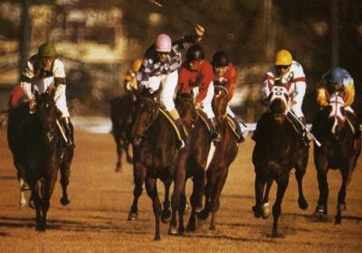第1回ジャパンカップの勝ち馬メアジードーツ