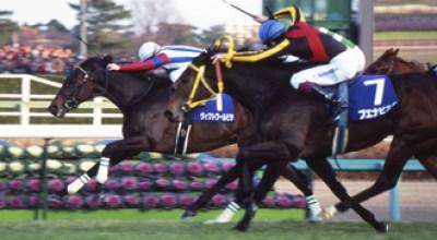 2010年の有馬記念