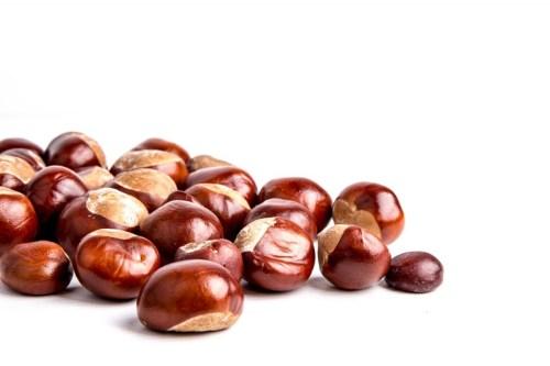 horse-chestnuts-1472629777qIB