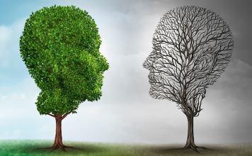 Students and Bipolar Disorder sandy began disorder
