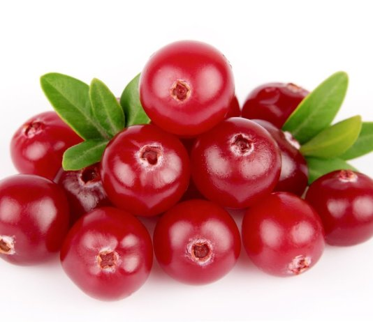 natural bacteria urinary tract infections cranberry extract