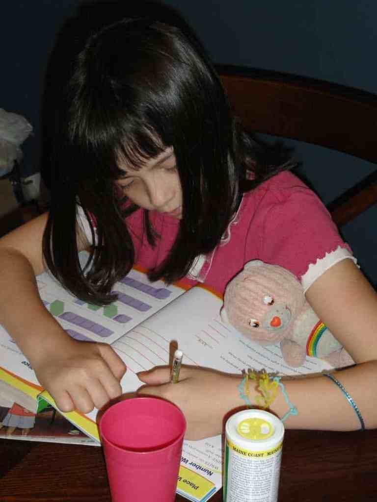 care bear homework helper