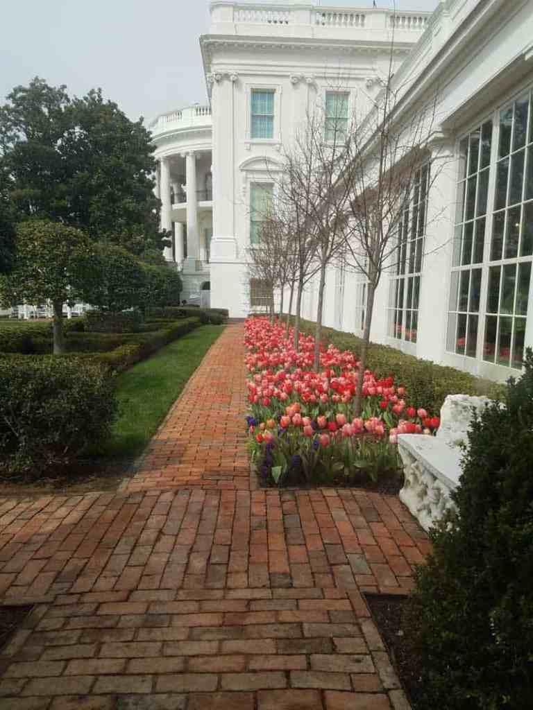garden at the white house