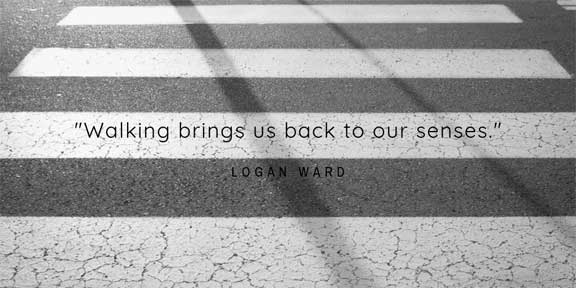 """""""Walking brings us back to our senses."""" concluded Logan Ward"""
