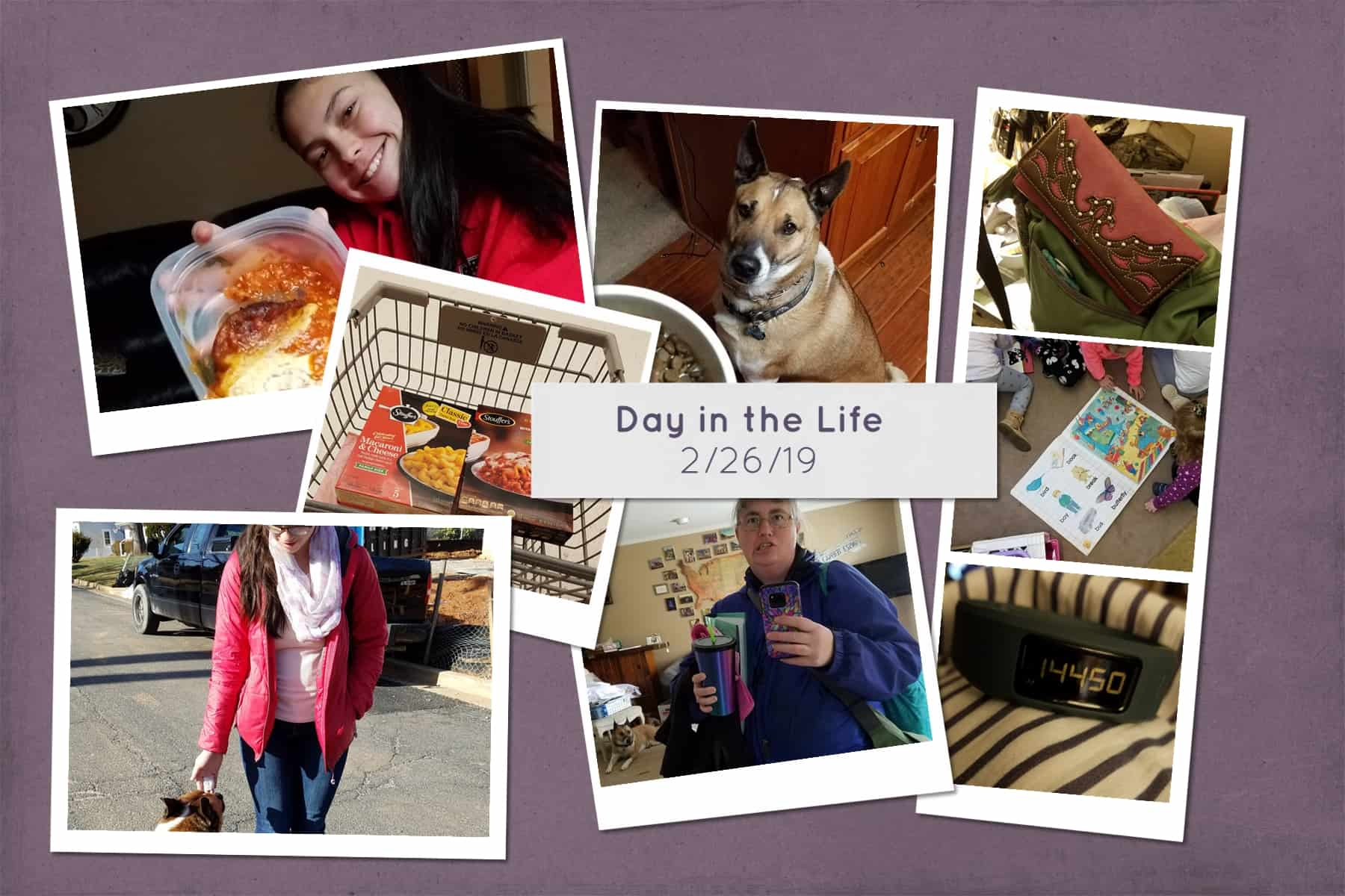 Day in the Life February 2019 via @behindeveryday