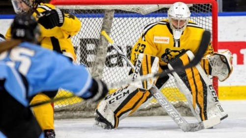 The NWHL sports business round up
