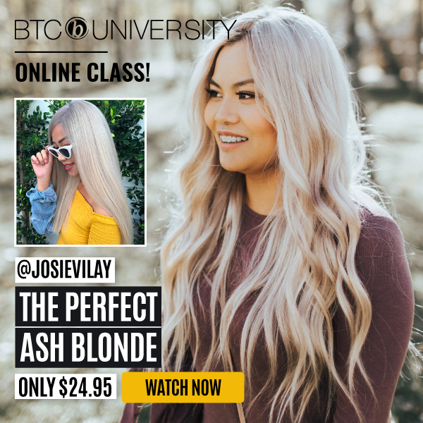 josie-vilay-ash-blonde-livestream-banner-omg-worthy-transformation-gallery-new-price-new-design