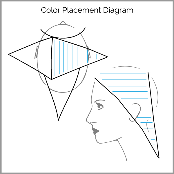Hair Color Placement Diagrams