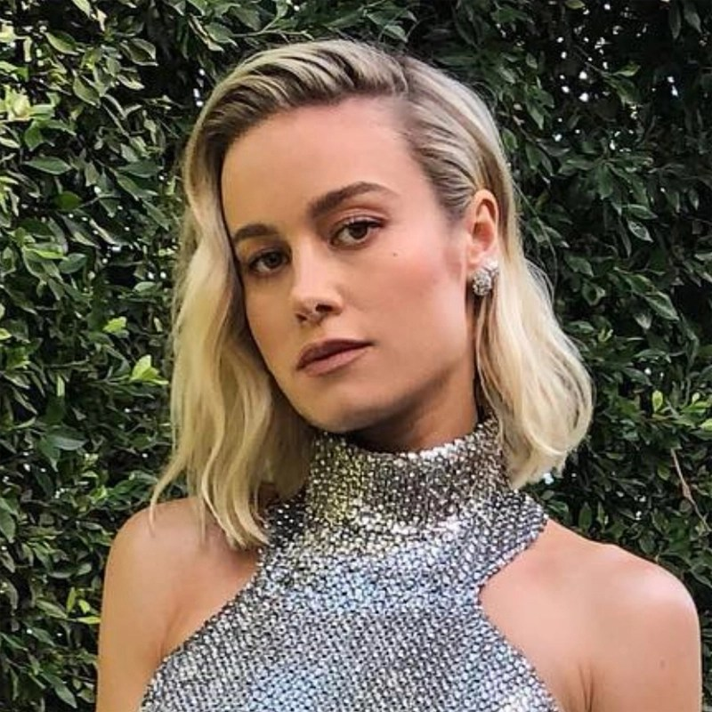 Brie Larson 2019 Oscars hair Academy Awards Celine dress Bryce Scarlett Moroccanoil