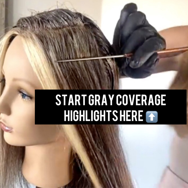 Gray Coverage Blonde Partial Highlights Base and Money Piece Toner How To Video Alfaparf Milano Cassie Siskovic @cassisiskovic