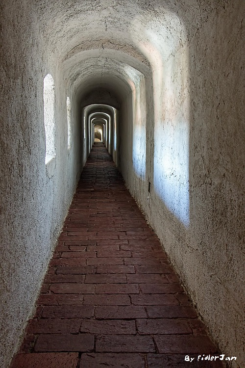 8145-By FidlerJan-A passage.R50