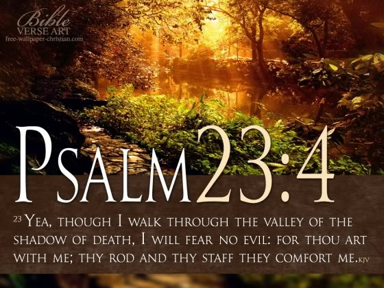 Psalm-23-4-Photo-Bible-Verse-560x42_zps921b1b49