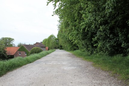 mooi zottegem - Leirensweg - achter het kasteel - rond Beislovenpark - IMG_5503