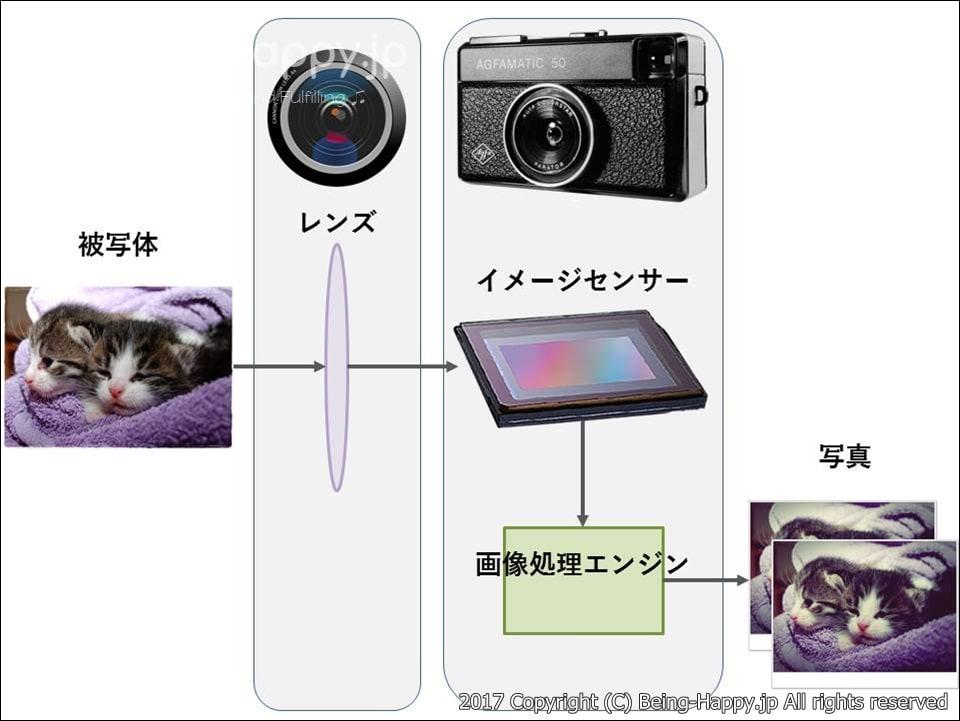 被写体がレンズとイメージセンサー・画像処理エンジンを通って写真になるまでの概要図