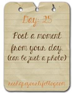 day-25_thumb