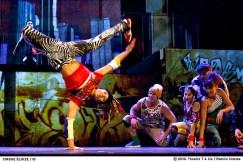 20140820_CirqueEloize_iD_Dance