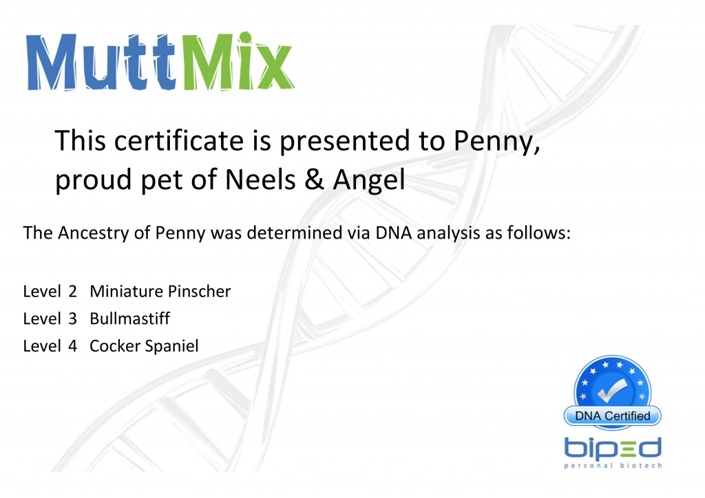 MuttMix_Penny Certificate (BP04040)-page-001