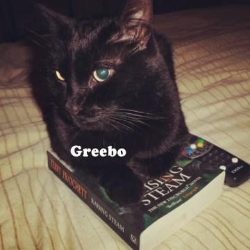 TheCats1_Greebo