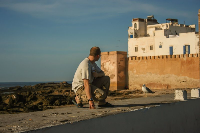 Chris on wall, next to a seagull in Essaouira, red brick building and sea in background